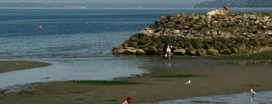 Kids on a Puget Sound beach.