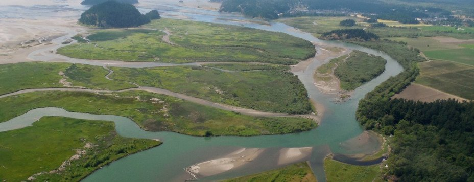 From an aerial view, it becomes clear how many waterways connect as the Skagit River flows to Puget Sound.