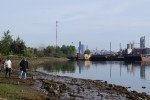 Volunteers walk the bank of the heavily polluted Duwamish River during an event.